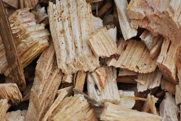 Recupero ed acquisto biomasse